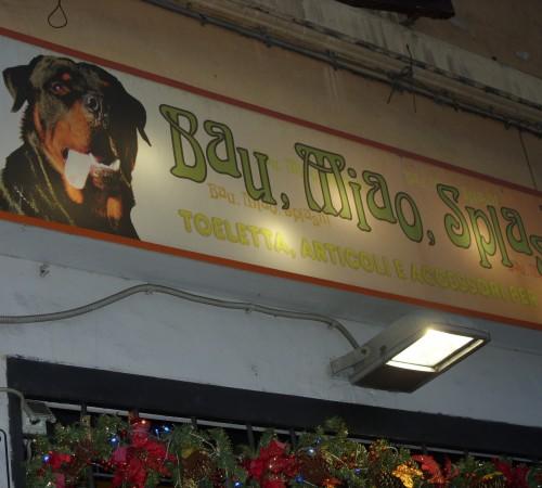 Italian Pet Store