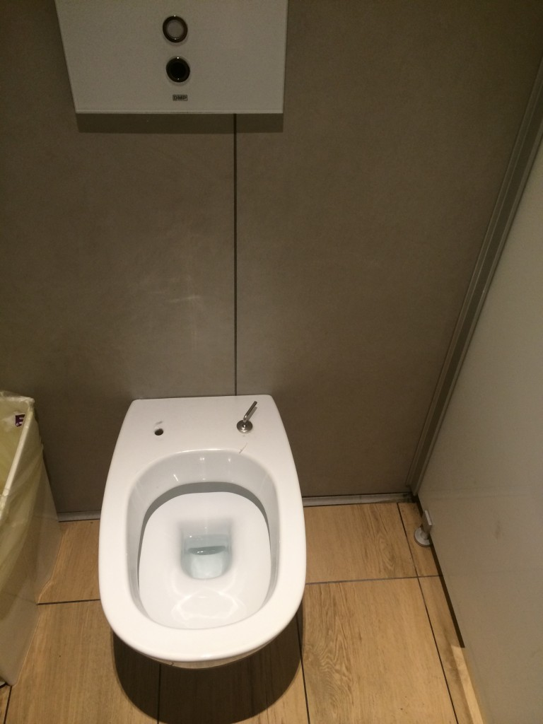 Fiumicino airport toilet