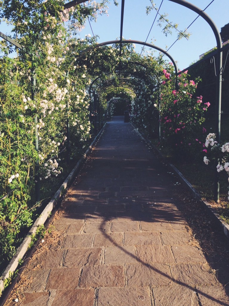 rose tunnel rome