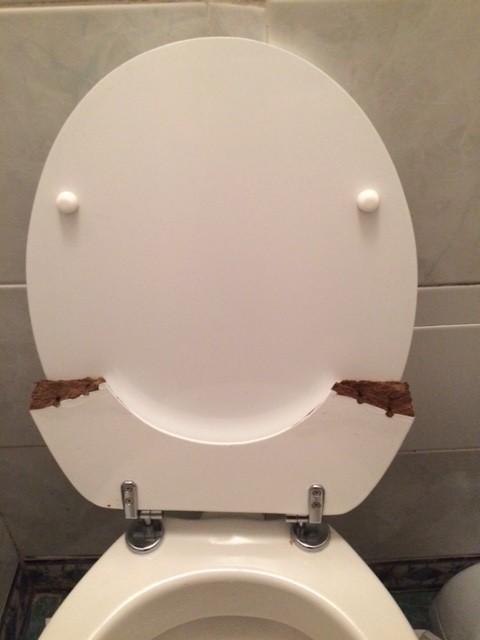 smiling toilet