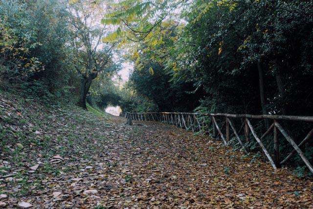 inside Testaccio Hill