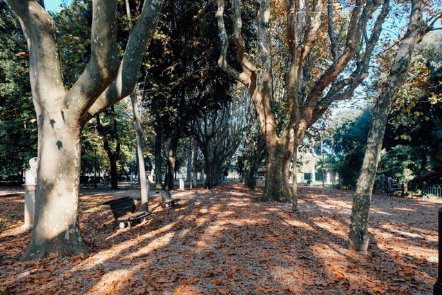 Autumn in Villa Borghese