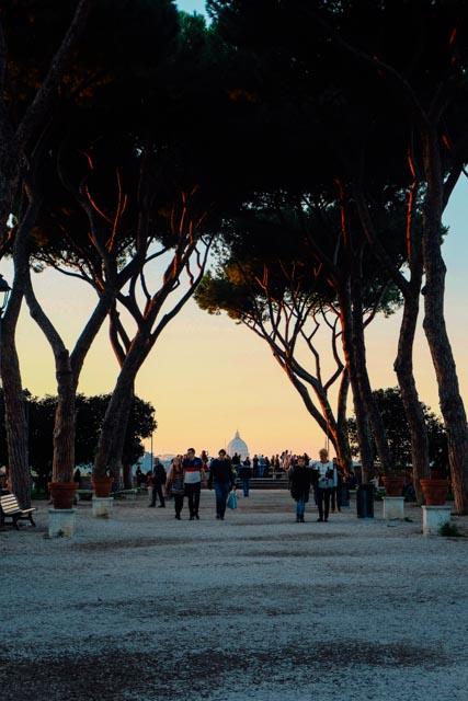 rome's orange garden