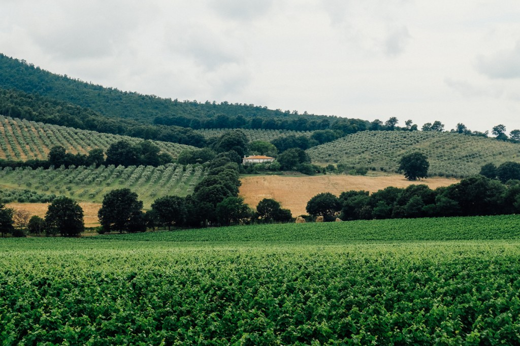 Capalbio Tuscany