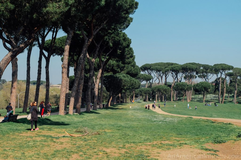 villa pamphili in Rome with pine trees lining a green space with walkers