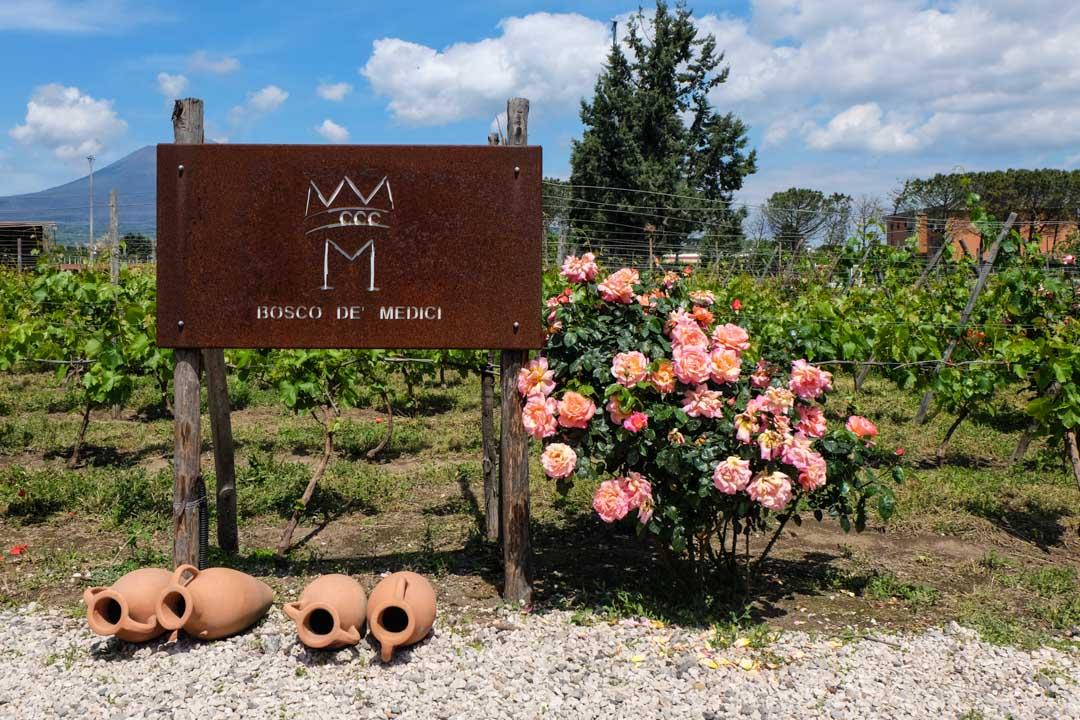 bosco de medici winery sign