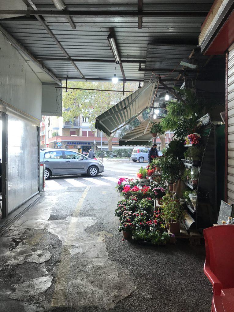 small garden shop